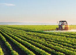 agriculture-700x394-260x188.jpg